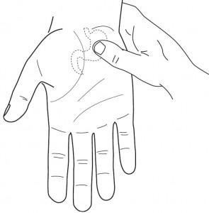 Masaż obszaru odpowiadajacego żołądkowi w standardowym systemie odpowiadajacym Su Dżok dłoni