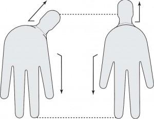 Podobieństwo dłoni do ciała pod względem ilości i kierunku wystających części.