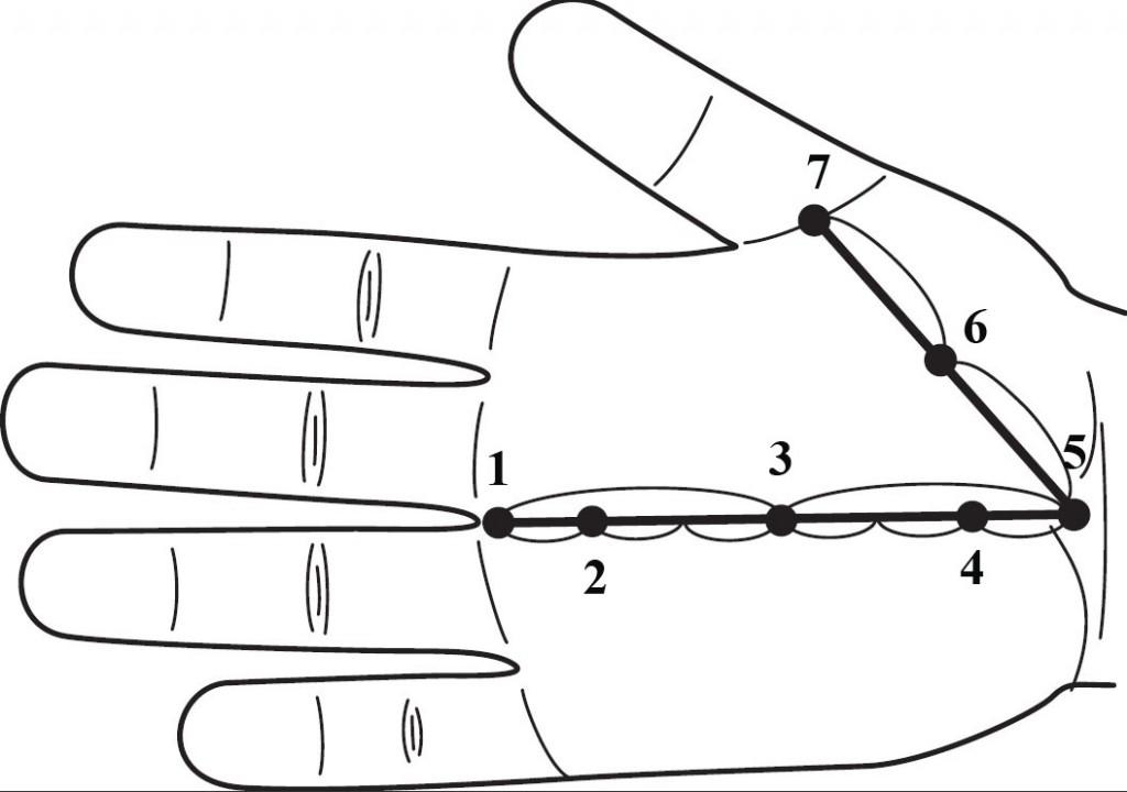 Energetyczne (podstawowe) punkty powierzchni Yin dłoni
