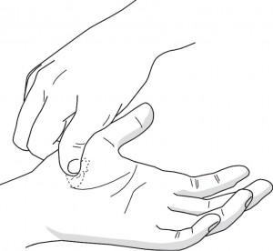 Masaż obszaru odpowiadającego sercu w standardowym systemie odpowiadającym Su Jok dłoni