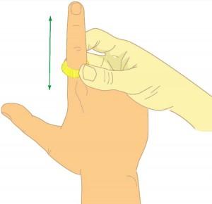"""Masaż obszarów odpowiadających kręgosłupowi przy pomocy pierścienia elastycznego w systemie """"owada"""""""