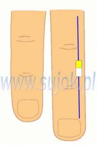 hamowanie-pecherza-moczowego-na-biol-meridianie